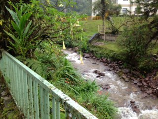 The river that runs behind the back fence.