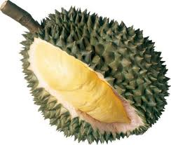 The edible part of the fruit is the yellow center.  Durians are about the size of a football.
