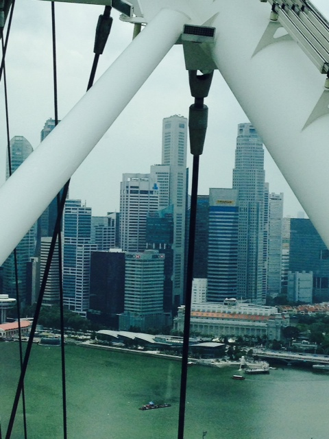 Another picture of Singapore behind the massive beams and cables.