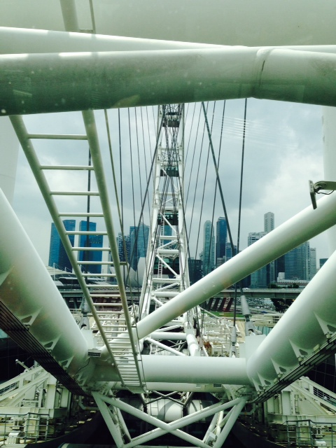A view of Singapore behind the massive beams and cables that hold the ferris wheel together.