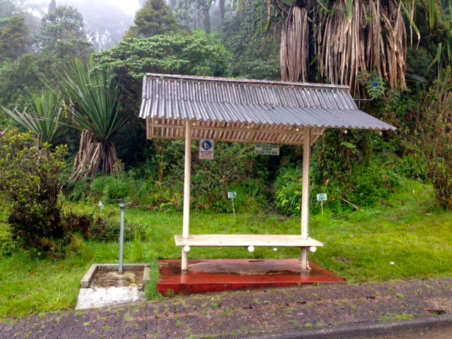 The (unoccupied) bus stop. The dark, curved line in the grass behind the bus stop is the path that the Papuans use to leave and enter the rainforest.