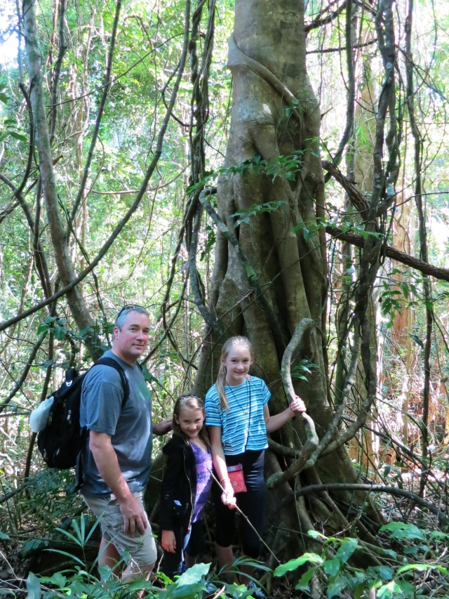 Chris and the girls hiking in Noosa Heads National Forest.