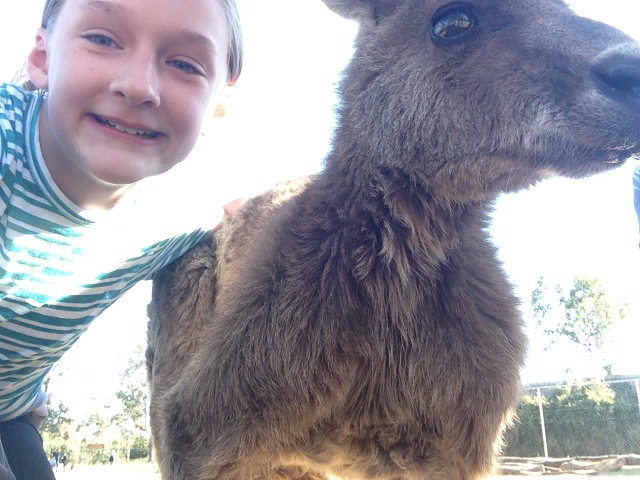 Selfie (with a kangaroo)!