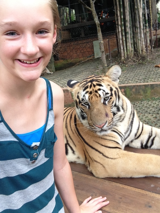 Ally with tiger