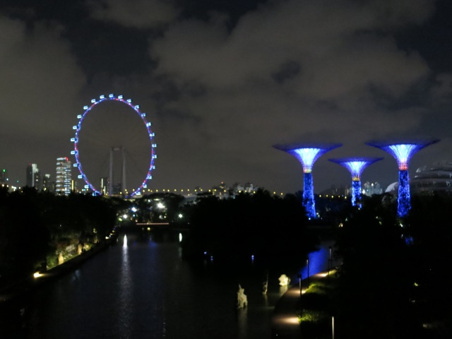 The Singapore Flyer (on the left) and the Super Trees (on the right).