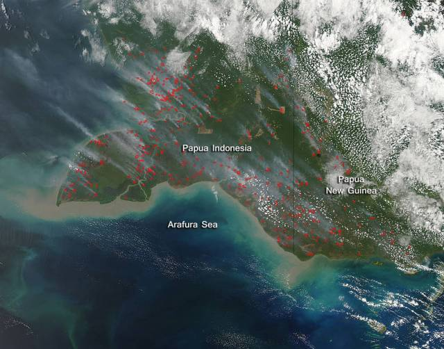This natural-color satellite image was collected by the Moderate Resolution Imaging Spectroradiometer (MODIS) aboard the Aqua satellite on September 24, 2015. Actively burning areas, detected by MODIS's thermal bands, are outlined in red and there is significant smoke rising from these areas and blowing northwest.  NASA image courtesy Jeff Schmaltz, MODIS Rapid Response Team. Caption: NASA/Goddard, Lynn Jenner