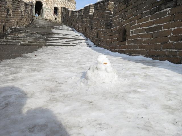 IMG_7145 Snowman